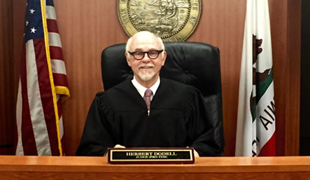 Judge Herb Dodell on the bench.